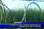 Готова е оградата, спираща навлизането на африканската чума от Румъния
