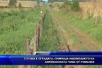 Готова е оградата, спираща навлизането на африканската чума от Румъния (разширен)