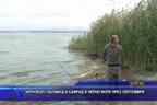 Чернокоп, паламуд и сафрид в Черно море през септември