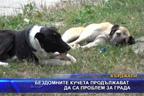 Бездомните кучета продължават да са проблем за града