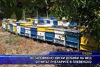 Незапомнено ниски добиви на мед отчитат пчеларите в плевенско