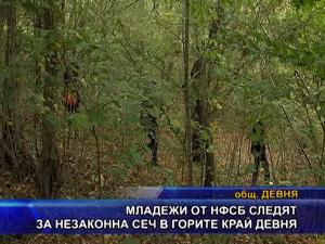 Младежи от НФСБ следят за незаконна сеч в горите край Девня