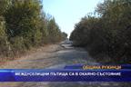 Междуселищни пътища са в окаяно състояние