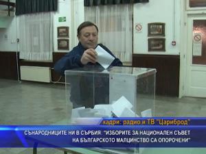 """Сънародниците ни в Сърбия: """"Изборите за национален съвет на българското малцинство са опорочени"""""""