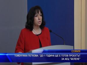 """Теменужка Петкова: До 1 година ще е готов проектът за АЕЦ """"Белене"""""""