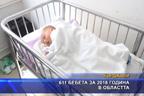 611 бебета са се родили в областта през 2018 г.