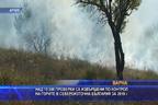 Над 10 000 проверки в горите в Североизточна България през изминалата година