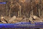 Масови проверки по горите в Североизточна България