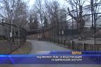 Над милион лева за модернизация на варненския зоопарк