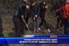 """Ученици и музейни работници садиха дръвчета по случай """"Седмицата на гората"""""""