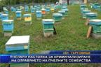 Пчелари настояха за криминализиране на отравянето на пчелните семейства