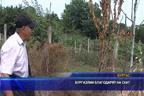 След намесата на телевизия СКАТ бе решен три годишен проблем с фекални води