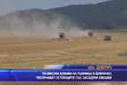 По=високи добиви на пшеница в Добруджа