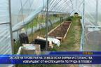 Засилени проверки на земеделски фирми и стопанства извършват от Инспекцията по труда