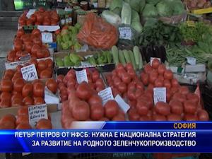 """Петър Петров от НФСБ: """"Нужна е национална стратегия за развитие на родното зеленчукопроизводство"""""""