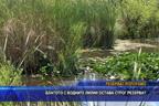 Блатото с водните лилии Аркутино остава строг резерват