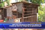 3900 собственици на прасета в областта трябва да получат средства за дезинфекция