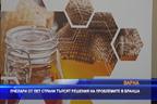 Пчелари от пет страни търсят решение на проблемите в бранша