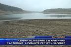 Язовир Ястребино е в критично състояние, а рибните ресурси загиват