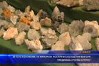 29-тото изложение на минерали, фосили скъпоценни камъни предизвика голям интерес