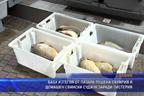 БАБХ изтегля от пазара пушена скумрия и домашен свински суджук заради листерия