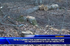 Тече съвместна кампания по превенция на незаконната сеч в област Бургас