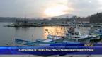 Забранява се уловът на риба в размножителния период