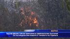 Над 600 декара горски територии в Североизточна България са пострадали от пожари от началото на годината