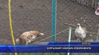 Бургаският зоопарк отвори врати